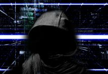 Cryptopia Sheds Light on the Amount of Funds Stolen by Hackers