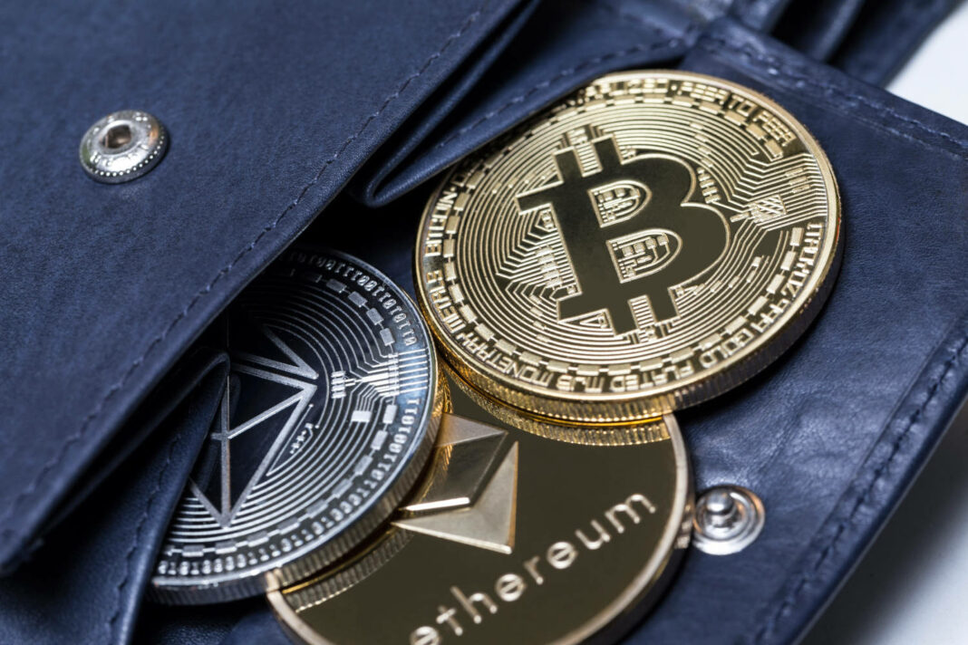 Wallet with cryptocurrency coins