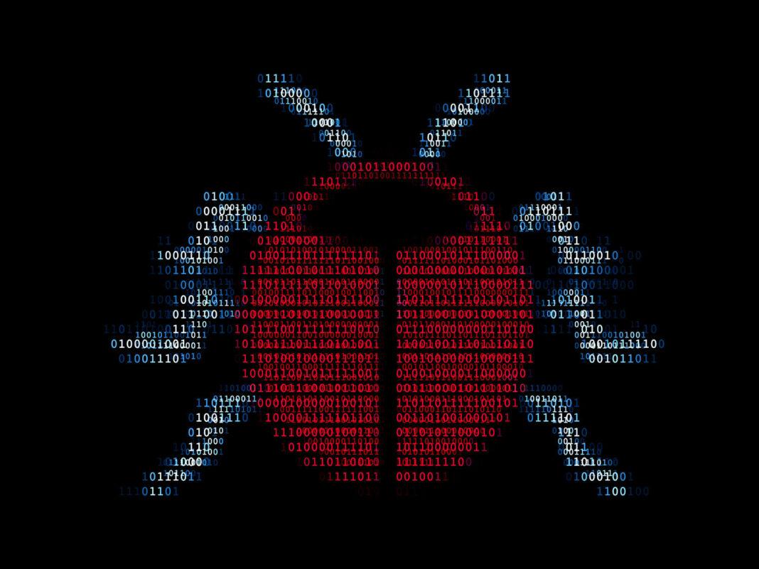 Digital software bug