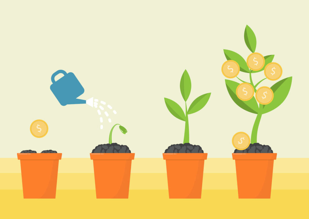 Watering money plant concept